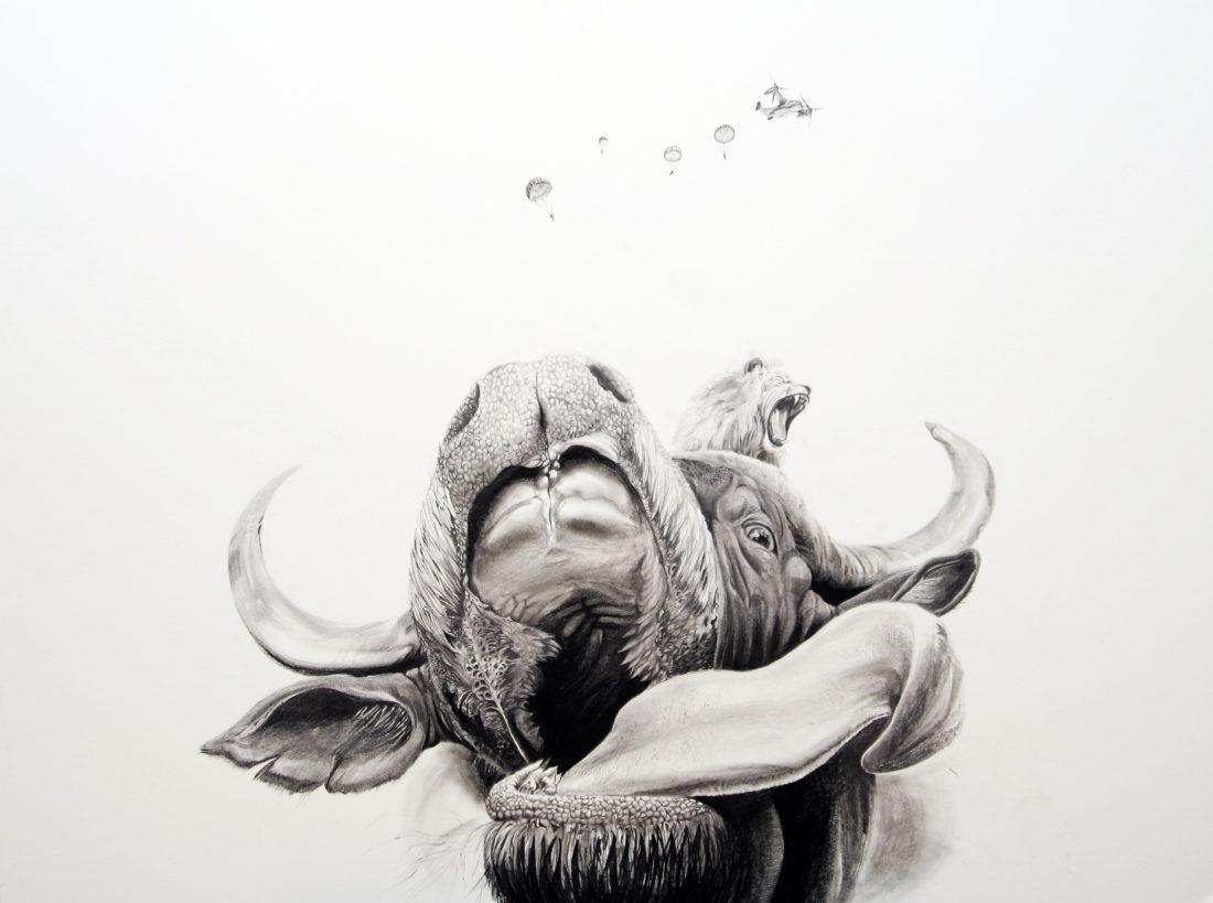 Buffalo, AaW (Animals at War)
