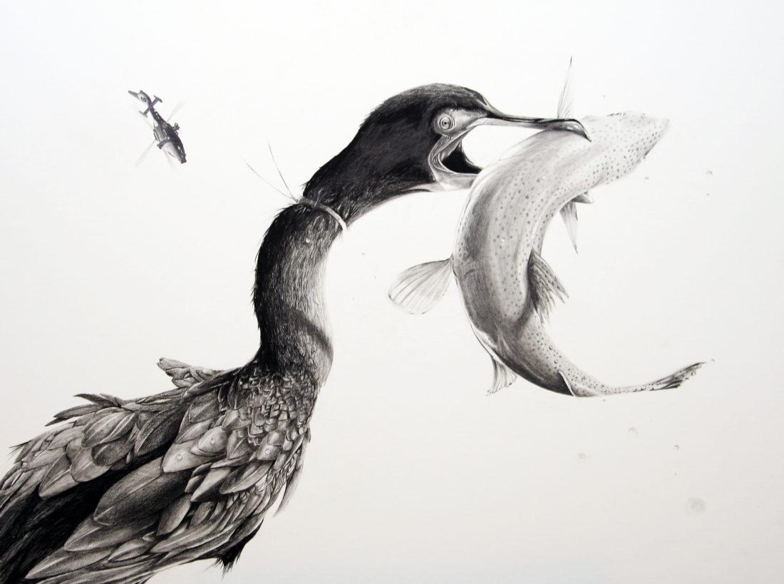 Cormorant, AaW (Animals at War)