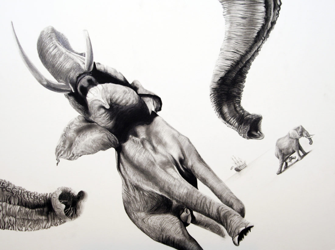 Elephants, AaW (Animals at War)