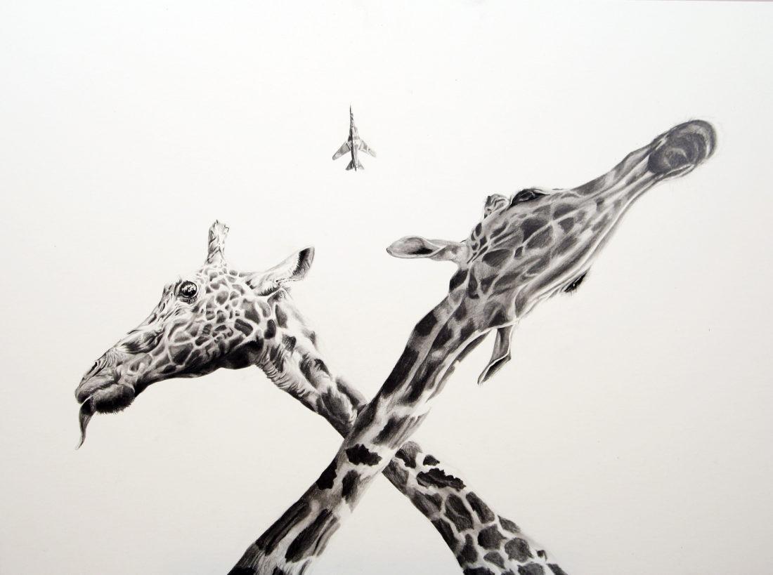 Giraffes, AaW (Animals at War)