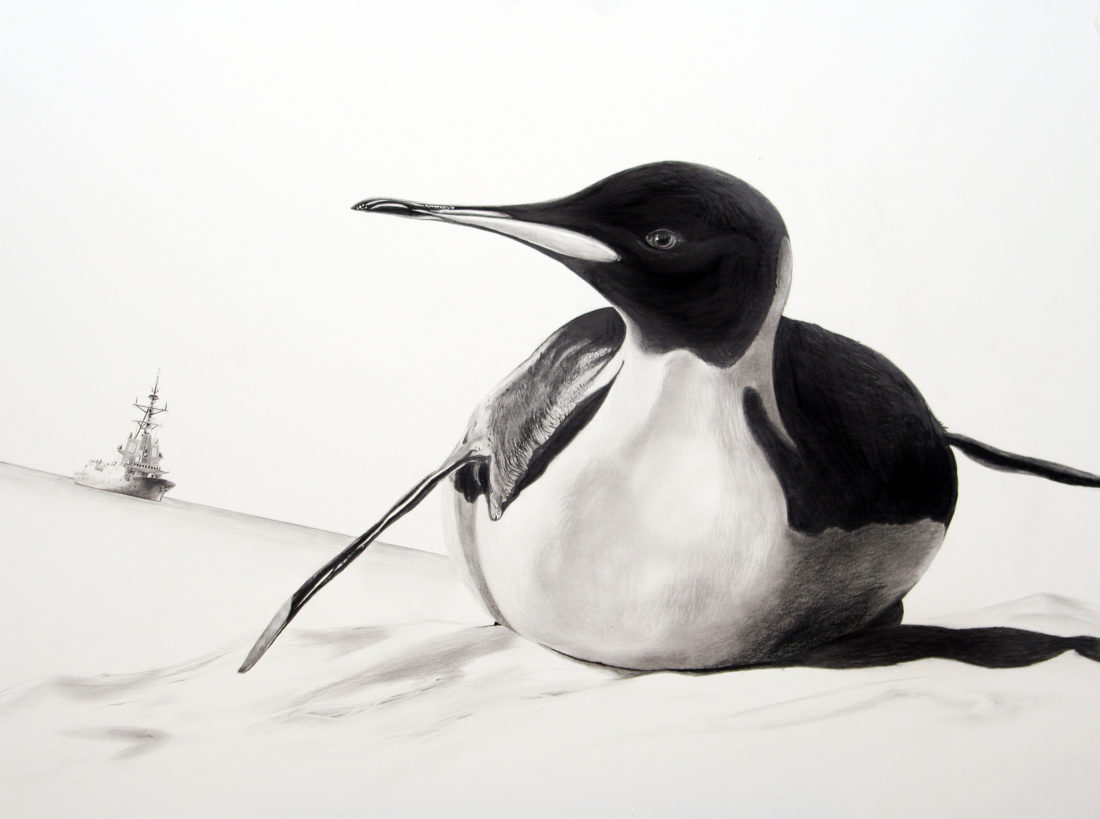 Penguin, AaW (Animals at War)